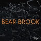 Introducing: Bear Brook
