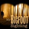 My Bigfoot Sighting artwork