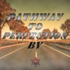 Pathway to Perfection artwork