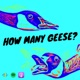 How many geese?