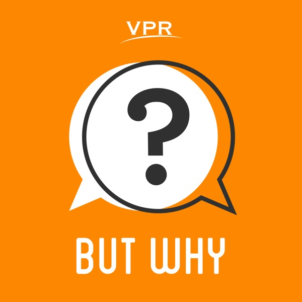But Why: A Podcast for Curious Kids banner backdrop