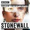 Nolan Investigates artwork