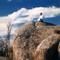 Zen Buddhist Temple's Podcast
