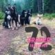 72 Grader Podcast - Hundsnack