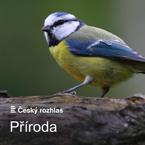 Český rozhlas - Příroda