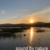 Sound By Nature artwork