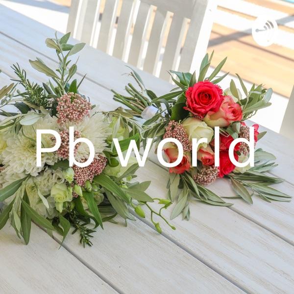 Pb world