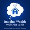 Imagine Wealth Without Risk artwork