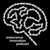 Endurance Innovation artwork