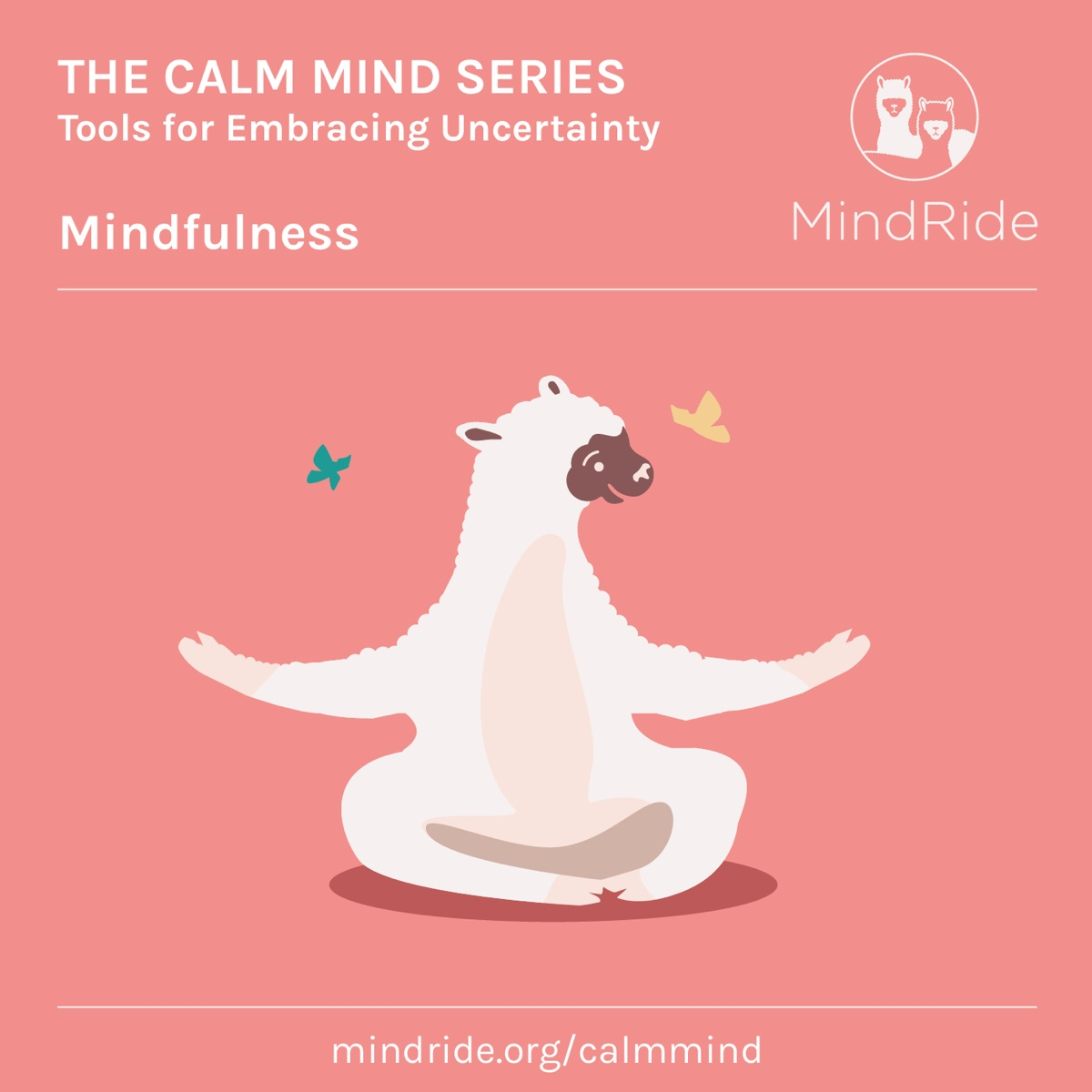 The Calm Mind Series: Tools for Embracing Uncertainty: Mindfulness