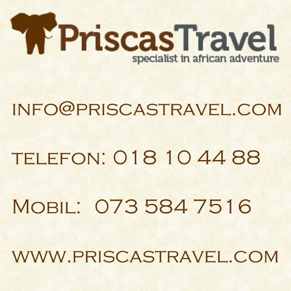 Res med Priscas Travel