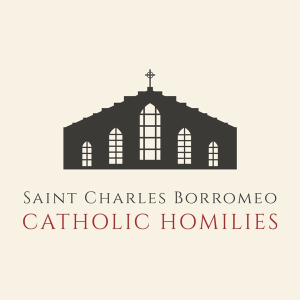 St. Charles Borromeo - Catholic Homilies and More