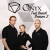 Onyx Test Bench artwork