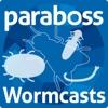 Wormcasts artwork