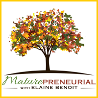 Maturepreneurial Podcast: Interviews with Older Entrepreneurs | Online Business Tips | Learn From Those Who Have Succeeded podcast