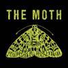 The Moth - The Moth