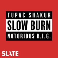 Podcast cover art for Slow Burn
