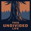 This Undivided Life artwork