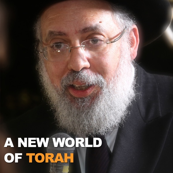 A New World of Torah with Rabbi Yaacov Haber