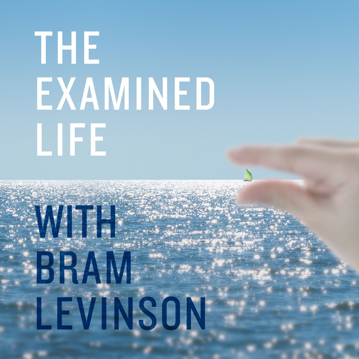 The Examined Life with Bram Levinson