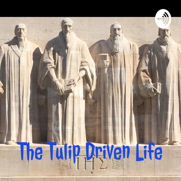 The Tulip Driven Life