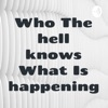 Who The hell knows What Is happening artwork