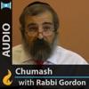 Daily Chumash with Rashi (Audio) - by Yehoshua B. Gordon