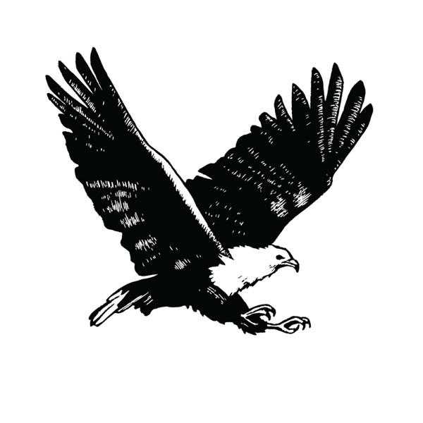 Diverge Podcast