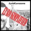 Lyndeurozone Euro Simplified artwork