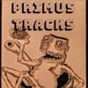 Primus Tracks artwork