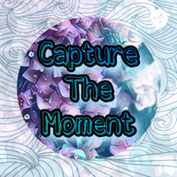 Capture the Moment podcast