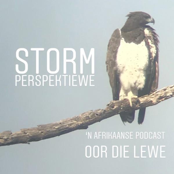 Storm Perspektiewe