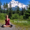 Guided Meditations artwork