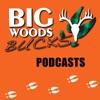 Big Woods Bucks - Deer Hunting -Education & Entertainment artwork