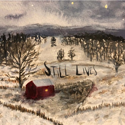 Still Lives:Studio Knox