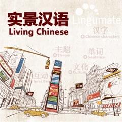 实景汉语Living Chinese