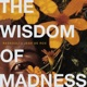 The Wisdom of Madness