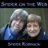 Spider on the Web artwork