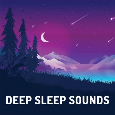 Deep Sleep Sounds:Slumber Group