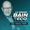 Le Grand Bain de l'Éco - PASCAL PERRI
