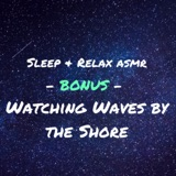 1 Hour: Watching Waves by the Shore