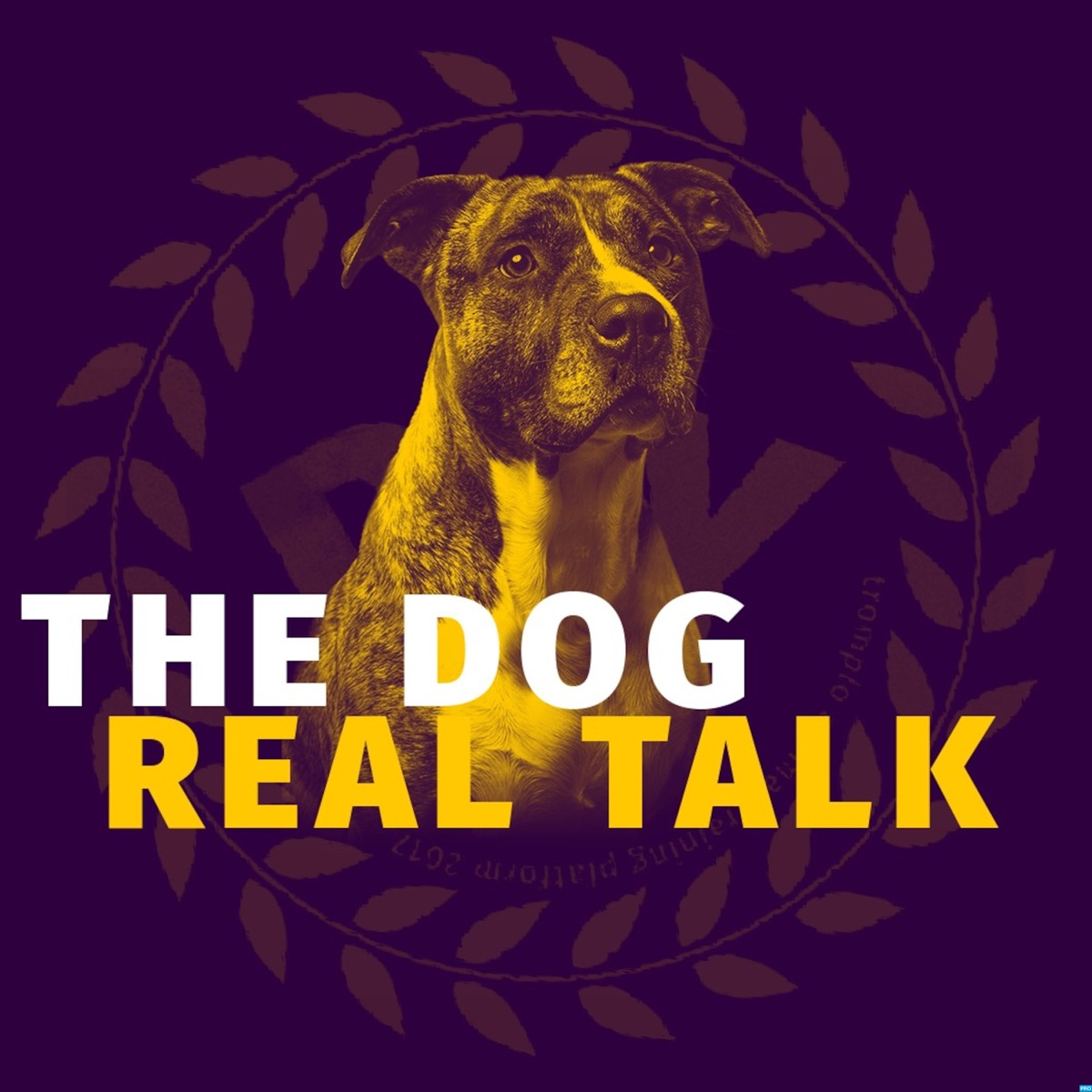 The Dog Real Talk - TROMPLO