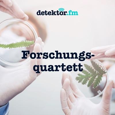 Forschungsquartett:detektor.fm