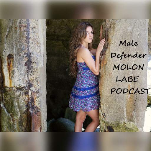 Cover image of Male Defender Podcast