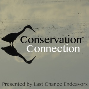 Conservation Connection