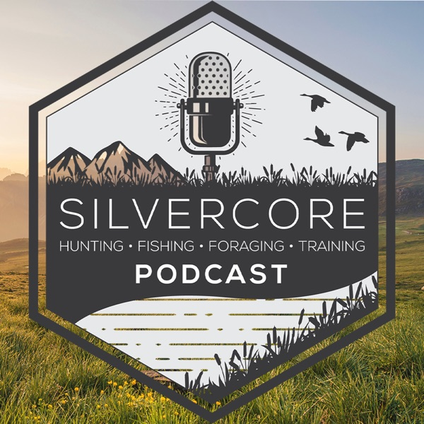 The Silvercore Podcast podcast show image