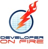 Developer On Fire artwork