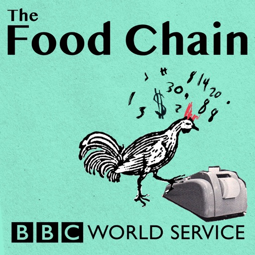 Cover image of The Food Chain