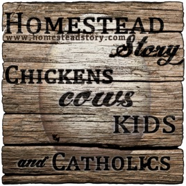 Homestead Story - Chickens, Cows, Kids, and Catholics on Apple Podcasts