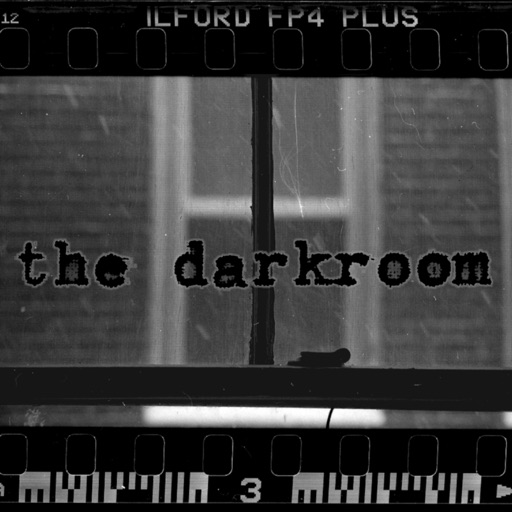Cover image of The Darkroom